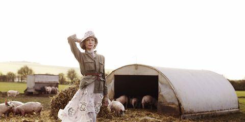 Farm, Rural area, Pasture, Sheep, Mammal, Sheep, Hat, Grazing, Field, Plain,