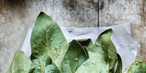 Leaf vegetable, Leaf, Ingredient, Vegetable, Whole food, Produce, Natural foods, Vegan nutrition, Local food, Chard,