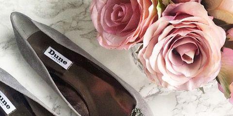 Eyewear, Shoe, Petal, Pink, Hybrid tea rose, Garden roses, Flowering plant, Cut flowers, Rose family, Rose order,