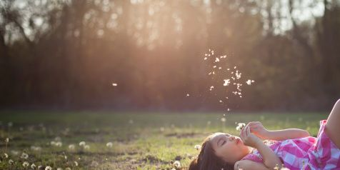 Nature, Grass, Mammal, Happy, People in nature, Sunlight, Summer, Light, Beauty, Meadow,