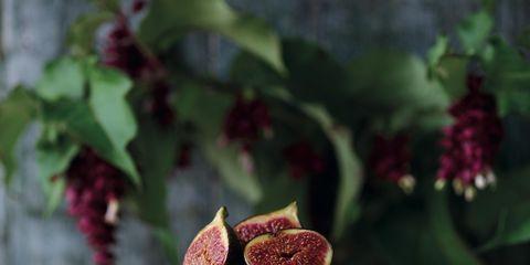 Sweetness, Petal, Ingredient, Serveware, Dessert, Botany, Garnish, Dish, Flowering plant, Recipe,