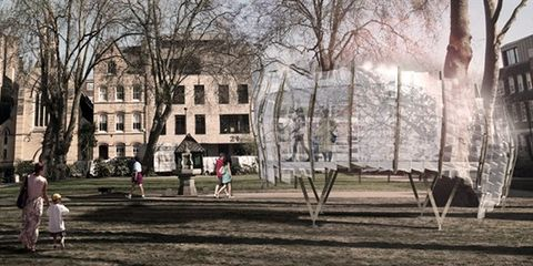 Window, Tree, Public space, Woody plant, Park, Lawn, Campus, University, Academic institution, Walking,
