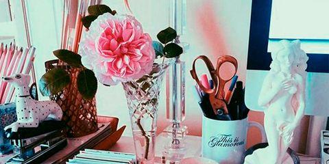 Drinkware, Liquid, Pink, Teal, Peach, Turquoise, Centrepiece, Aqua, Interior design, Bouquet,