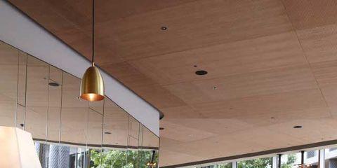 Interior design, Interior design, Wood stain, Lampshade, Light fixture, Rose, Lighting accessory, Flower Arranging, Varnish, Rose order,