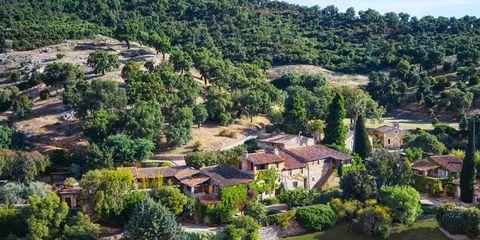 Vegetation, Plant, Landscape, Neighbourhood, Tree, Residential area, House, Land lot, Garden, Home,