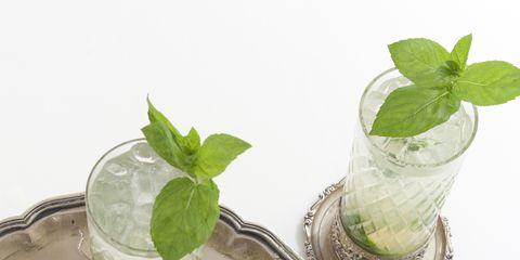 Mojito, Mint julep, Mint, Drink, Limonana, Basil, Spearmint, Food, Alcoholic beverage, Lemon basil,
