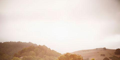 Sky, Sunlight, Road, Landscape, Tree, Cloud, Dirt road, Vehicle, Photography, Furniture,