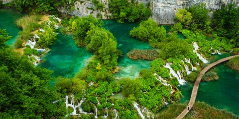 Body of water, Nature, Vegetation, Natural landscape, Water resources, Water, Landscape, Watercourse, Nature reserve, Bank,