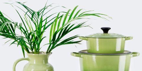 Serveware, Green, Dishware, Flowerpot, Porcelain, Pottery, Ceramic, Still life photography, Lid, earthenware,