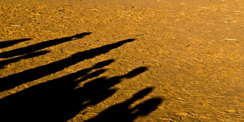 Shadow, People in nature, Sunlight, Gesture, Tints and shades, Sand,