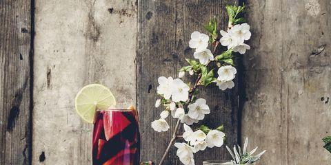 Drinkware, Serveware, Glass, Tableware, Drink, Petal, Still life photography, Distilled beverage, Alcoholic beverage, Classic cocktail,