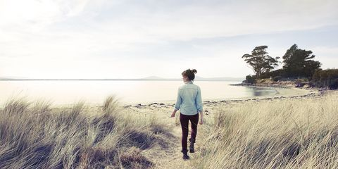 Human, People in nature, Grass family, Walking, Sand, Beach, Shore, People on beach, Trail, Phragmites,