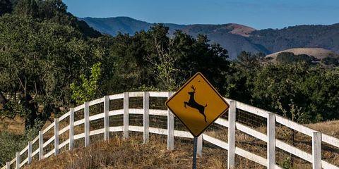 Road, Mountainous landforms, Natural landscape, Infrastructure, Highland, Mountain range, Guard rail, Street sign, Nature reserve, Sign,