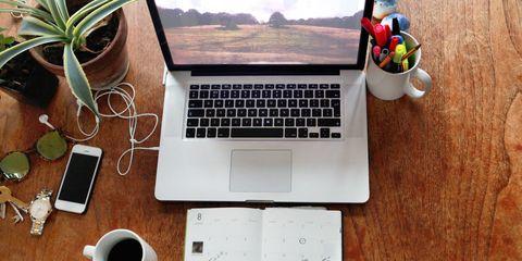 Product, Electronic device, Flowerpot, Office equipment, Technology, Gadget, Laptop part, Laptop, Computer hardware, Space bar,