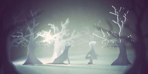Branch, Twig, Atmospheric phenomenon, Darkness, World, Holding hands, Trunk, Backlighting, Gesture, Shadow,