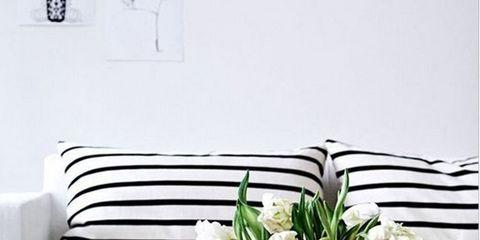 Room, Interior design, Flower, White, Couch, Interior design, Wall, Petal, Linens, Living room,