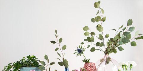 Interior design, Flowerpot, Lavender, Botany, Vase, Artifact, Still life photography, Pottery, Serveware, Floral design,