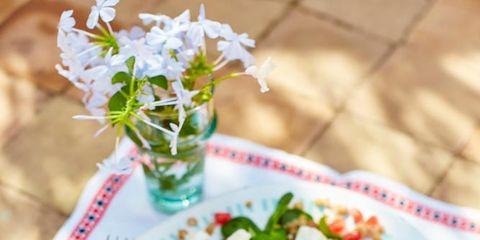 Food, Salad, Cuisine, Dish, Recipe, Ingredient, Leaf vegetable, Garden salad, Bouquet, Flowerpot,