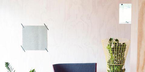 Flowerpot, Interior design, Majorelle blue, Houseplant, Outdoor furniture, Net,