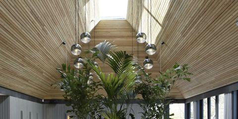 Interior design, Glass, Furniture, Table, Drinkware, Stemware, Ceiling, Restaurant, Dishware, Chair,