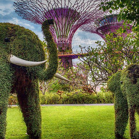 Sculpture, Tree, Green, Garden, Botanical garden, Grass, Shrub, Botany, Sky, Plant,