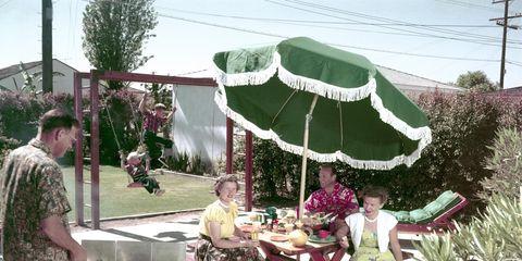 Leg, Plant, Outdoor furniture, Outdoor table, Table, Umbrella, Garden, Pole, Shade, Patio,