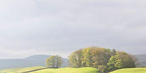 Grass, Landscape, Plain, Natural landscape, Land lot, Grassland, Rural area, Hill, Field, Stone wall,