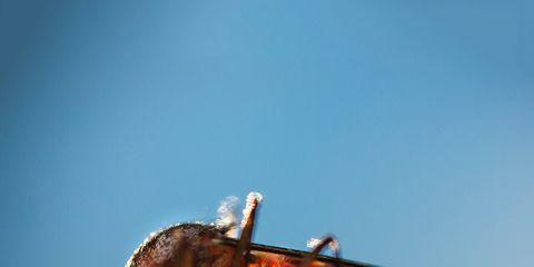 Invertebrate, Nature, Organism, Insect, Arthropod, Pest, Amber, Carmine, Macro photography, Coquelicot,