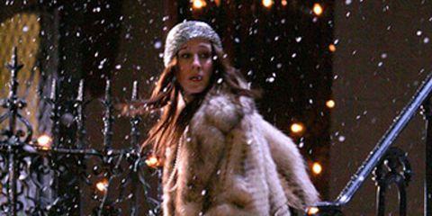 Winter, Snow, Freezing, Fur, Precipitation, Fur clothing, Winter storm, Holiday, Natural material, Rain and snow mixed,