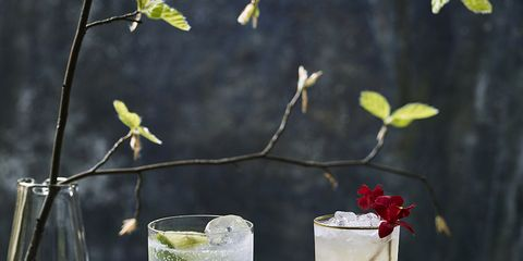 Liquid, Fluid, Glass, Drink, Drinkware, Alcoholic beverage, Tableware, Cocktail, Distilled beverage, Classic cocktail,