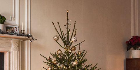 Room, Interior design, Christmas decoration, Home, Christmas tree, Interior design, Holiday, Living room, Christmas ornament, Christmas,