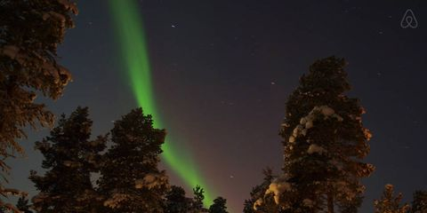 Night, Aurora, Tree, Woody plant, Space, Midnight, Star, Cottage, Conifer, Astronomical object,