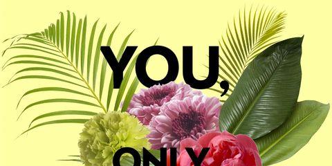 Petal, Flower, Pink, Flowering plant, Poster, Cut flowers, Illustration, Floral design, Graphics, Peony,