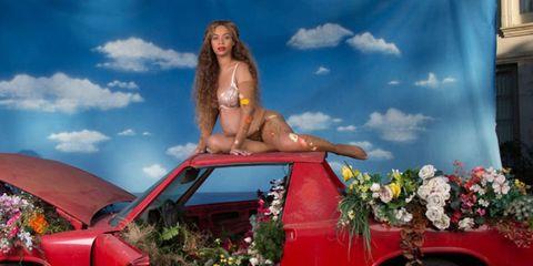 Automotive exterior, Hood, Swimwear, Flowerpot, Bikini, Long hair, Foot, Blond, Trunk, Undergarment,