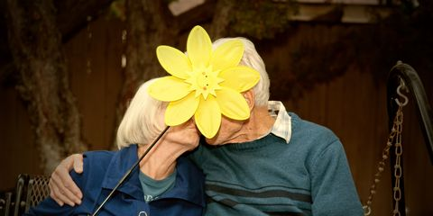 Petal, Flower, Sweater, Spring, Wildflower, Herbaceous plant, Pollen, Floral design, Pedicel, Button,