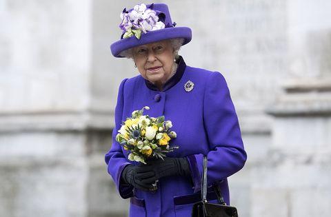 purple, cobalt blue, blue, flower, street fashion, electric blue, plant, performance,