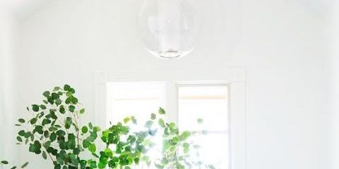 Room, White, Green, Interior design, Furniture, Property, Wall, Floor, Table, House,