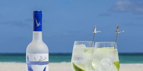 Drink, Distilled beverage, Bottle, Liqueur, Vodka, Alcoholic beverage, Ocean, Wine bottle, Paloma, Mojito,