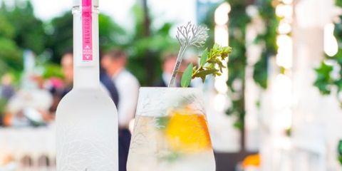 Drink, Alcoholic beverage, Liqueur, Distilled beverage, Bottle, Glass bottle, Wine bottle, Champagne cocktail, Wine cocktail, Cocktail,