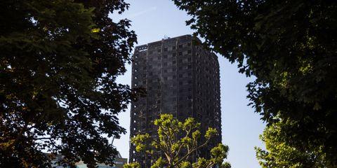 Tree, Architecture, Sky, Leaf, Metropolitan area, Tower block, Urban area, Landmark, Yellow, City,