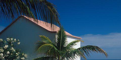 Coastal and oceanic landforms, Real estate, Woody plant, Ocean, Arecales, Resort, Azure, Tropics, Shade, Outdoor furniture,