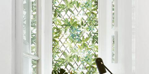 White, Green, Curtain, Interior design, Houseplant, Window treatment, Room, Window, Yellow, Flowerpot,