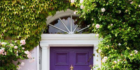 Door, Property, Blue, Green, House, Home door, Yellow, Purple, Pink, Building,