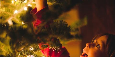 Christmas ornament, Christmas tree, Red, Tree, Light, Christmas, Nose, Christmas decoration, Sky, Christmas lights,