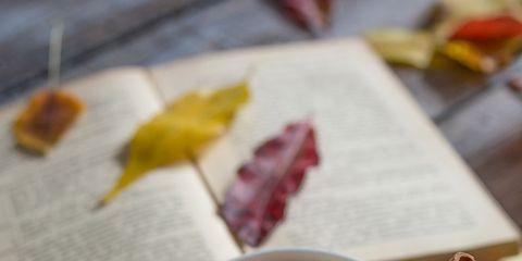 Food, Dish, Cuisine, Ingredient, Recipe, Produce, Dessert, Vegetarian food, Breakfast, Coddle,