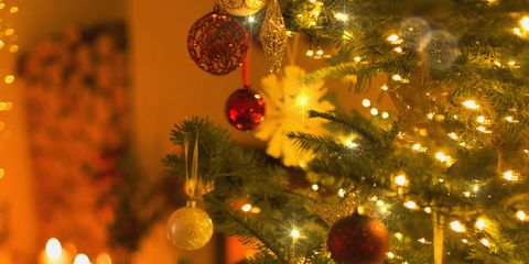 Christmas tree, Christmas ornament, Christmas, Christmas decoration, Tree, Spruce, Tradition, Branch, Christmas eve, Fir,