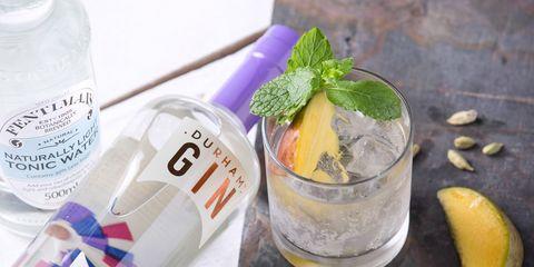Drink, Alcoholic beverage, Distilled beverage, Gin and tonic, Food, Meyer lemon, Liqueur, Vodka and tonic, Shrub, Ingredient,