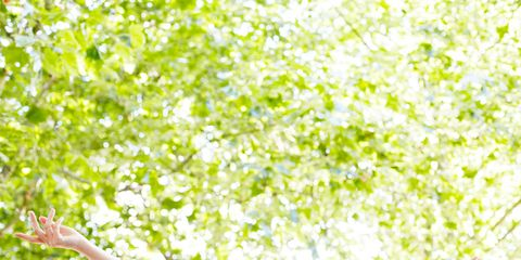 People in nature, Green, Yellow, Happy, Sunlight, Spring, Smile, Arm, Leaf, Gesture,