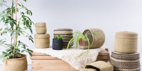 Flowerpot, Product, Twine, Room, Wicker, Table, Furniture, Plant, Houseplant, Basket,
