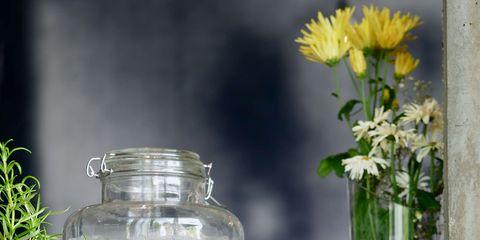 Liquid, Bottle, Drinkware, Flower, Petal, Glass, Fluid, Glass bottle, Grey, Flowering plant,